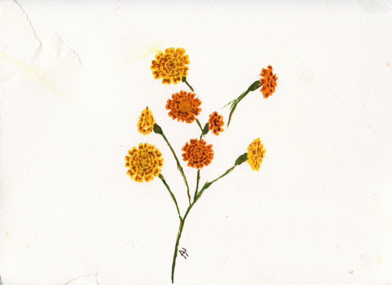 Marigolds on Torn Paper