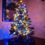 tree_xmas_2010